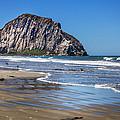 Morro Rock by David Millenheft