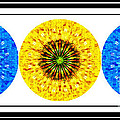 Mosaic Blue Circles With Yellow by Barbara Griffin