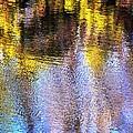 Mosaic Reflection At The River by Karen Majkrzak
