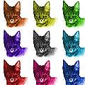 Mosaic Savannah Cat - 5462 F - M - Wb by James Ahn