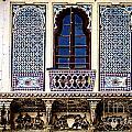 Mosaic Windows by Catherine Arnas