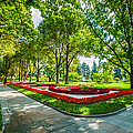 Moscow Kremlin Tour - 64 Of 70 by Alexander Senin