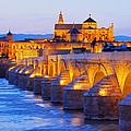 Mosque-cathedral And The Roman Bridge In Cordoba by Karol Kozlowski