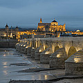 Mosque Cathedral Of Cordoba Also Called The Mezquita And Roman Bridge by Ayhan Altun