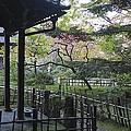 Moss Garden Temple - Kyoto Japan by Daniel Hagerman