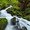 Mossy Creek Cascade by Darren  White