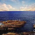 Mossy Point 2 by Ben Yassa