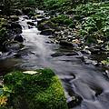 Mossy Rock Streamside by Jeff Swan