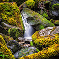 Mossy Waterfall by Kevin Clifford