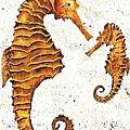 Mother And Baby Seahorse by Carol Lindquist