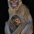 Motherly Love by Joachim G Pinkawa