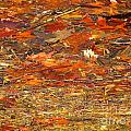 Mothers Abstract 07 by Rrrose Pix