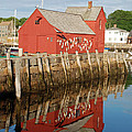 Motif 1 With Reflection by Richard Bryce and Family