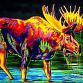Motley Moose by Teshia Art