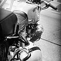 Moto Guzzi Helmet by Kelly Hazel
