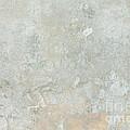 Mottled Beige Cement by Jim Pruitt
