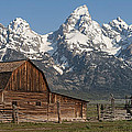 Moulton Barn - Grand Tetons I by Sandra Bronstein