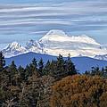 Mount Baker by Bob Stevens