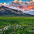 Mount Crested Butte Summer Sunset by Matt Suess