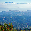 Mount Diablo From Mount Tamalpias-california by Ruth Hager