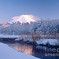 Mount Fuji In Winter by Masao Hayashi
