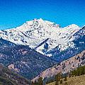 Mount Gardner Close Up by Omaste Witkowski