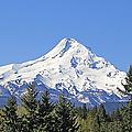 Mount Hood Mountain Oregon by Jennie Marie Schell