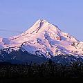 Mount Hood Oregon by Buddy Mays