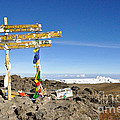 Mount Kilimanjaro Summit Sign In 5.895 Meters With Northern Ice Fields Beyond  by Elke Christina Lackner