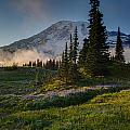 Mount Rainier Evening Fog by Mike Reid