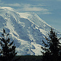 Mount Rainier From Patterson Road by Carlene Salazar