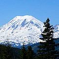 Mount Rainier Panorama by Carol Groenen