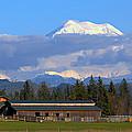 Mount Rainier by Paul Fell