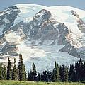 Mount Rainier Peak by Tim Fitzharris