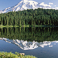 Mount Rainier Reflection by Tim Fitzharris