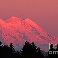 Mount Rainier by Ron  Tackett