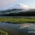 Mount Rainier Shrouded In Fog by Jim Corwin