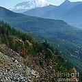 Mount Saint Helens Majesty by Susan Garren