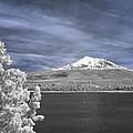 Mount Shasta by Alan Kepler