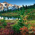 Mount Shuksan Fall Cornucopia by Inge Johnsson