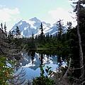 Mount Shuksan Reflection by Karen Molenaar Terrell