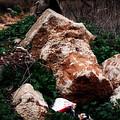 Mount Trashmore - Series Xi by Doc Braham