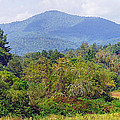 Mountain And Valley Near Brevard by Duane McCullough