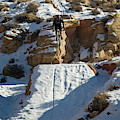 Mountain Biker Jumping With Snowy by Whit Richardson