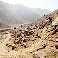 Mountain Biker Rides Through Rocky by Dan Barham