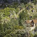 Mountain Cabin - Sierra Nevadas, California Usa by B Christopher