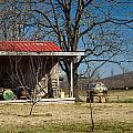 Mountain Cabin In Tennessee 2 by Douglas Barnett