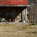 Mountain Cabin In Tennessee 3 by Douglas Barnett