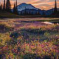 Mountain Colours  by Gene Garnace