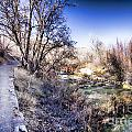 Mountain Creek Path-sundance Utah by Douglas Barnard